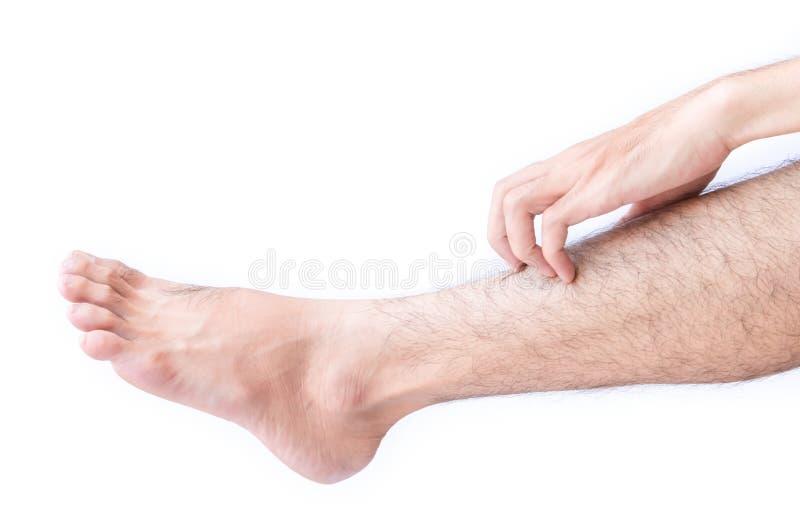 Main de femme rayant sur des pieds avec le fond blanc pour sain image stock