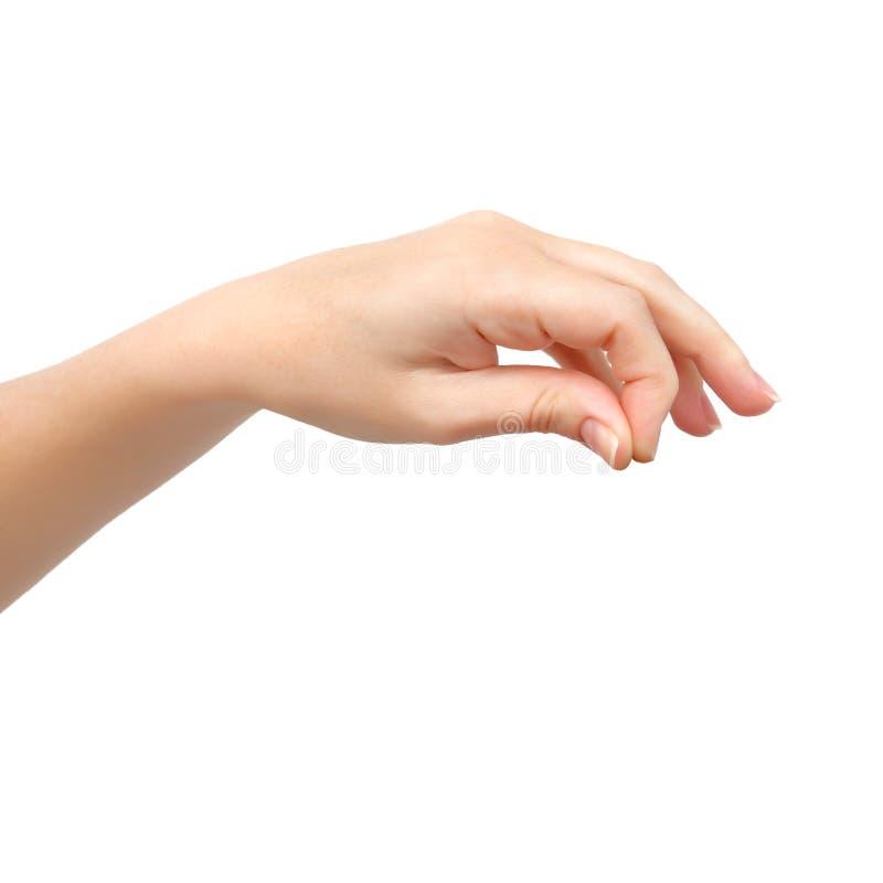 Main de femme sur le fond d'isolement tenant un objet photo stock