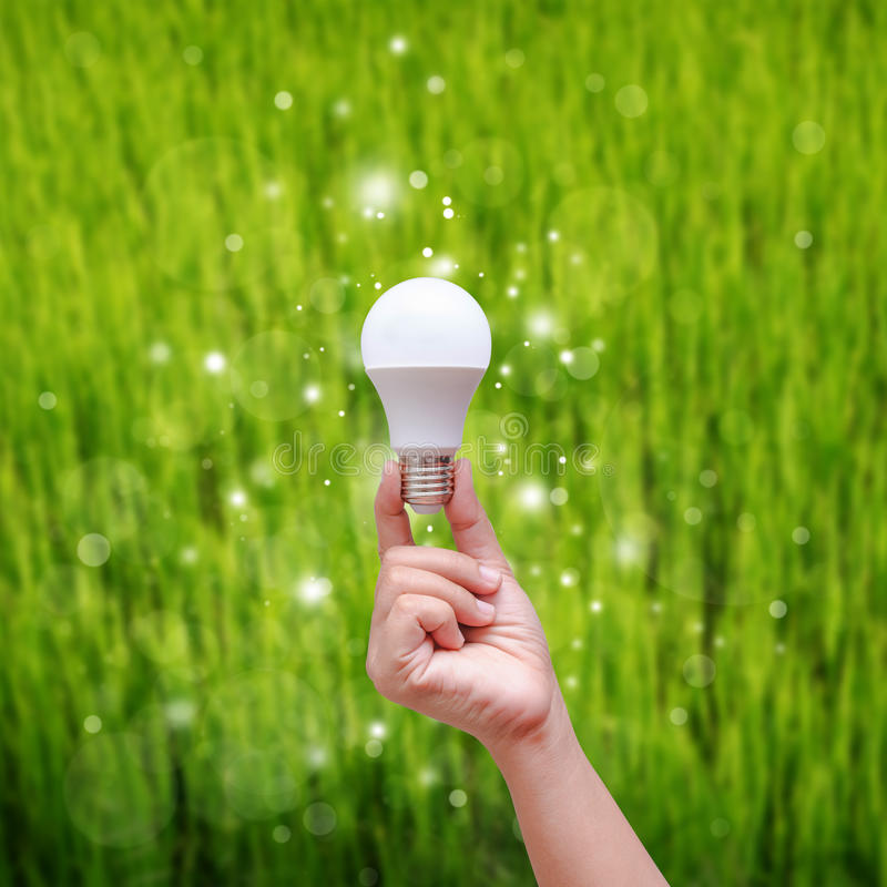 Main de femme tenant l'ampoule de LED sur le backgroud vert photo libre de droits