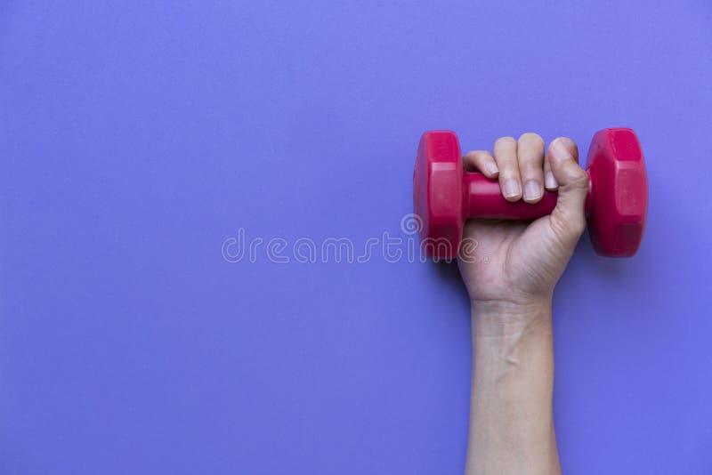 Main de femme tenant l'haltère rouge image libre de droits