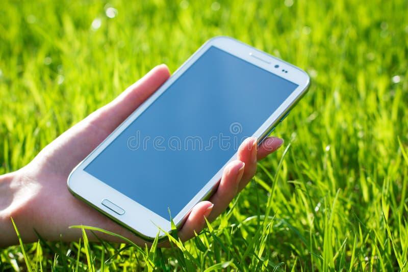 Main de femme tenant le téléphone intelligent sur le fond vert photo libre de droits