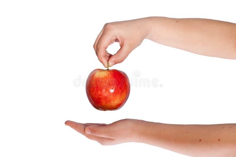 Main de femme tenant une pomme rouge images libres de droits