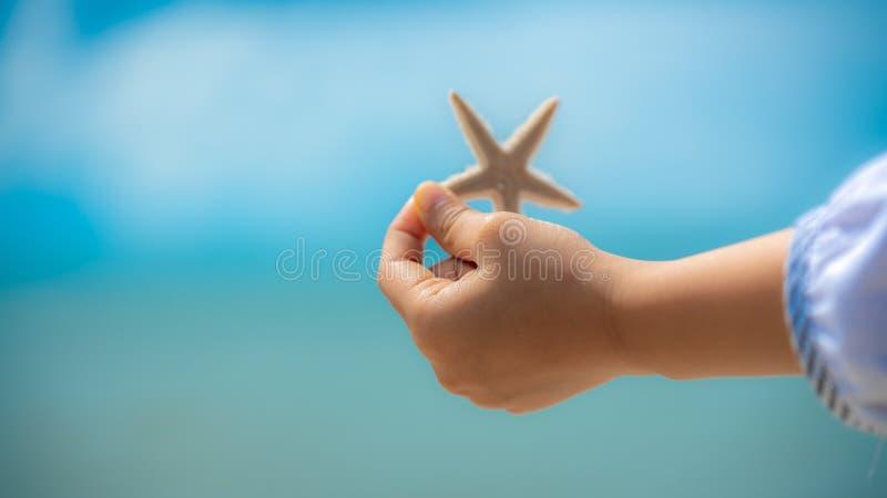 Main de fille tenant une étoile de mer images stock