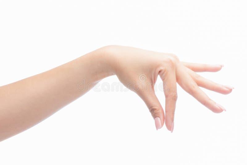 Main de geste de femme tenant l'objet image stock