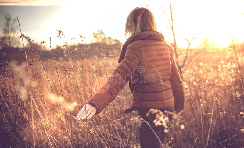 Main de jeune femme dans un domaine comme concept de récolte extérieur images libres de droits