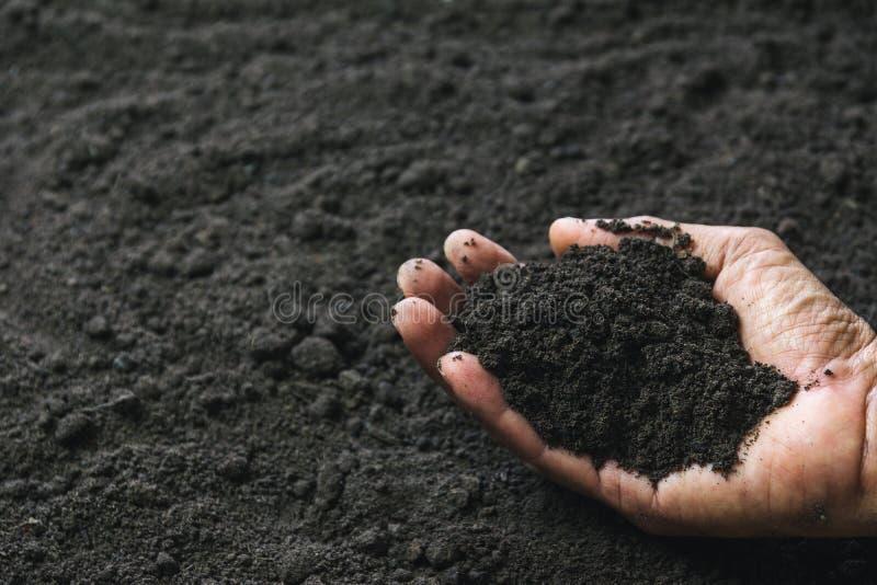 Main de plan rapproch? de personne tenant le sol d'abondance pour l'agriculture ou plantant le concept de p?che image stock