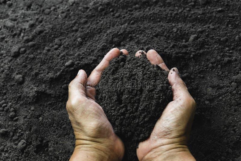 Main de plan rapproch? de personne tenant le sol d'abondance pour l'agriculture ou plantant le concept de p?che images libres de droits