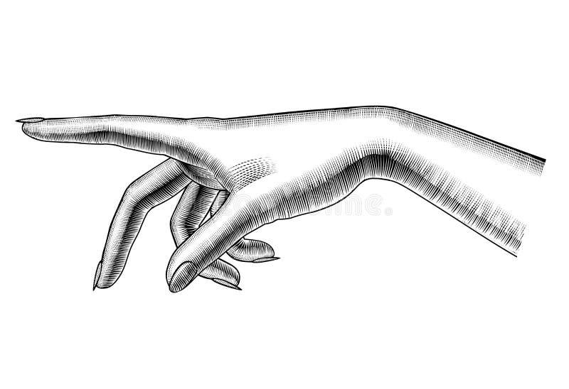 Main de pointage femelle d'isolement sur le blanc illustration de vecteur
