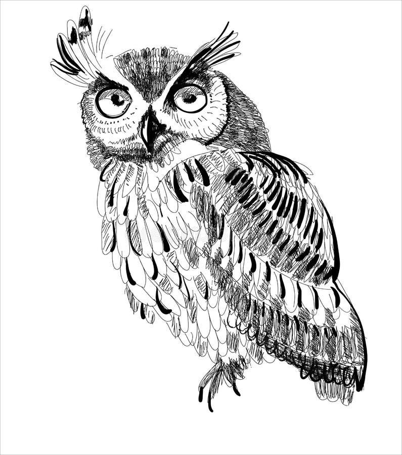 Main-dessin de hibou sur un fond blanc illustration libre de droits