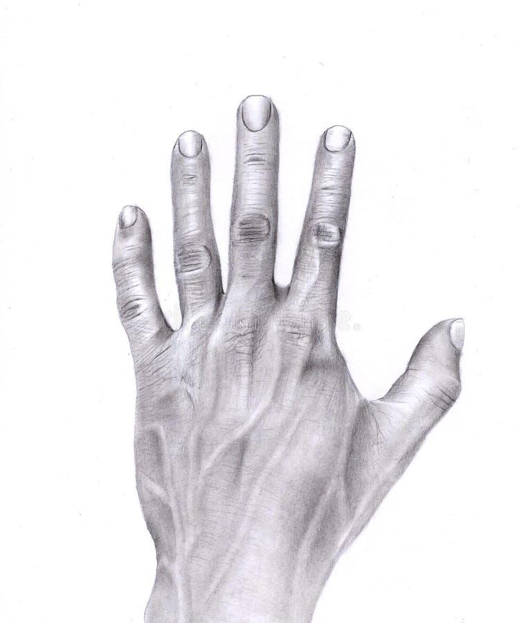 Main illustration de vecteur