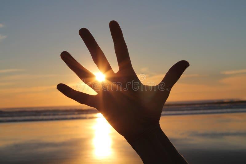 Main devant le coucher du soleil image stock
