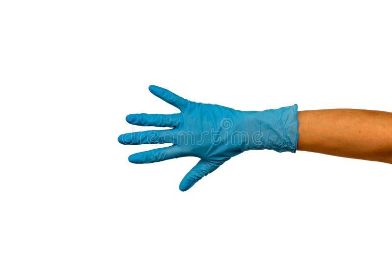 Main du ` s de femme dans un gant en caoutchouc Isolat sur le fond blanc E photo stock