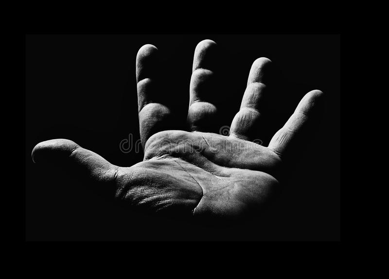 Main en noir et blanc photographie stock