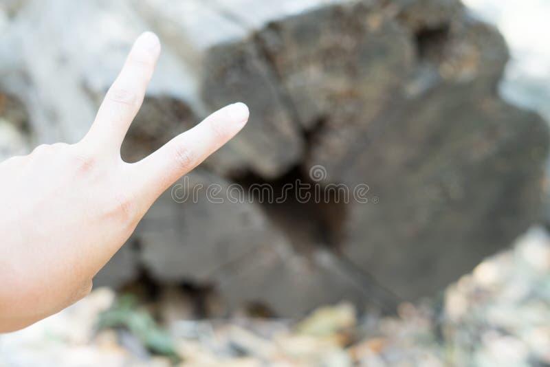 Main et bois de signe de V photo stock