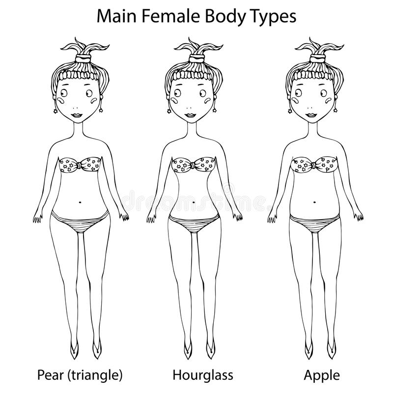 Main Female Body Shape Types. Hourglass, Pear or Triangle and Apple. Realistic Hand Drawn Doodle Style Sketch. Vector. Main Female Body Shape Types. Hourglass royalty free illustration