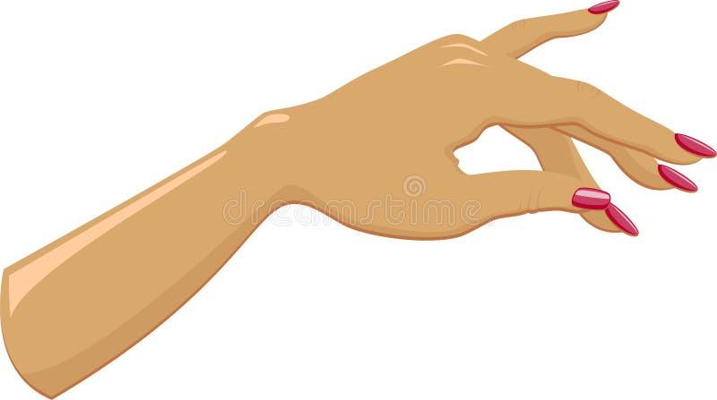 Main femelle avec manicured illustration libre de droits