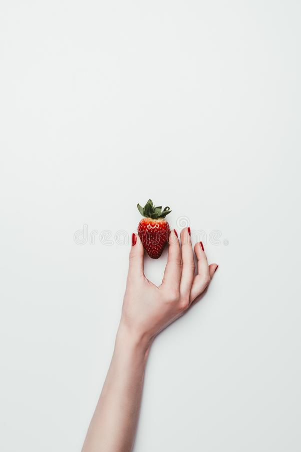 Main femelle jugeant la fraise mûre d'isolement sur le blanc photos stock