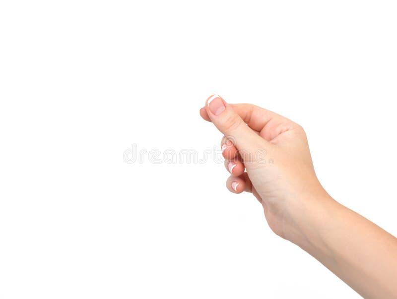 Main femelle sur d'isolement image stock