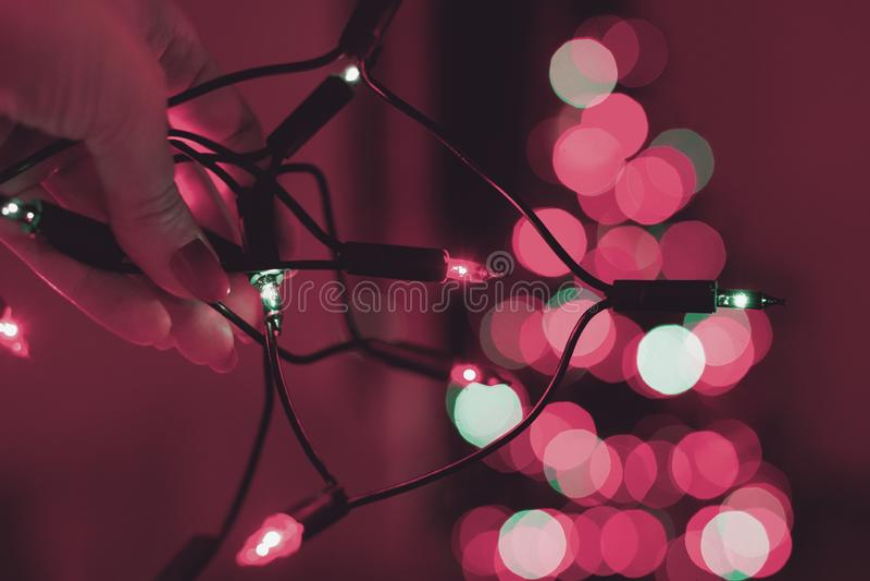 Main femelle tenant la ficelle des lumières de Noël avec l'arbre defocused de Noël à l'arrière-plan Lumières de Noël photos stock