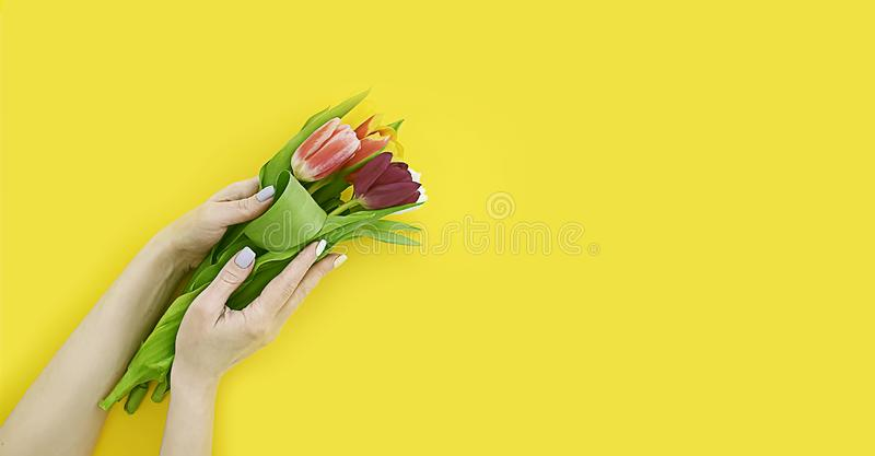 Main femelle tenant un bouquet des tulipes sur un fond coloré photo stock