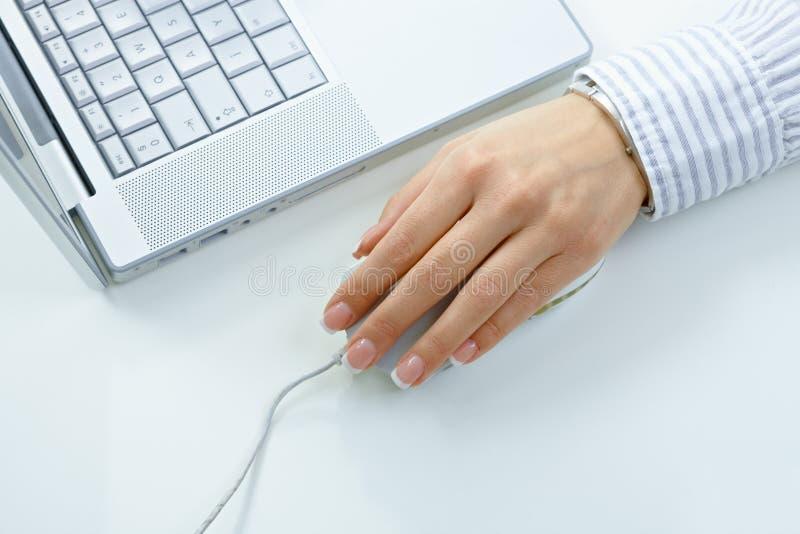 Main femelle utilisant la souris d'ordinateur image stock