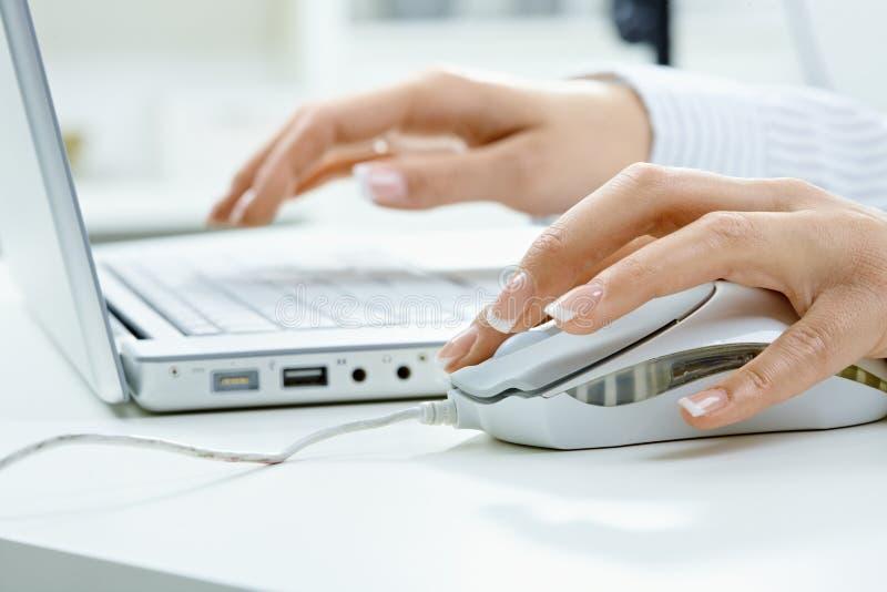 Main femelle utilisant la souris d'ordinateur images stock