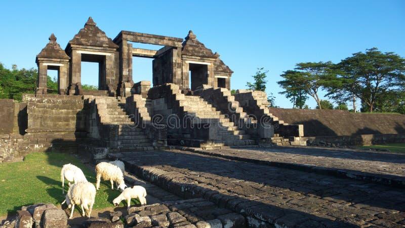 Download Main Gate Of Ratu Boko Palace Stock Image - Image: 20063433