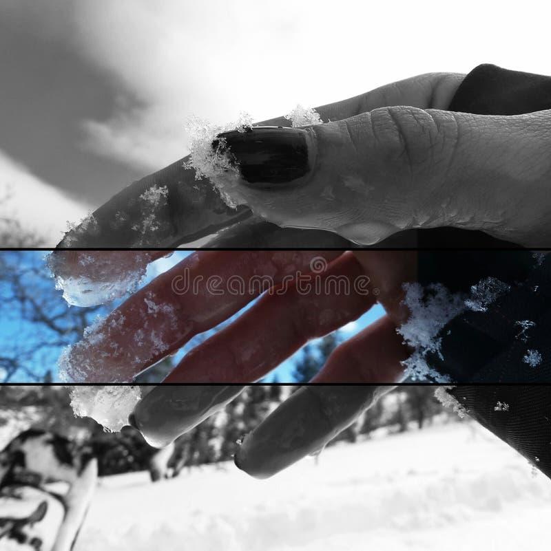 Main glaciale photographie stock libre de droits
