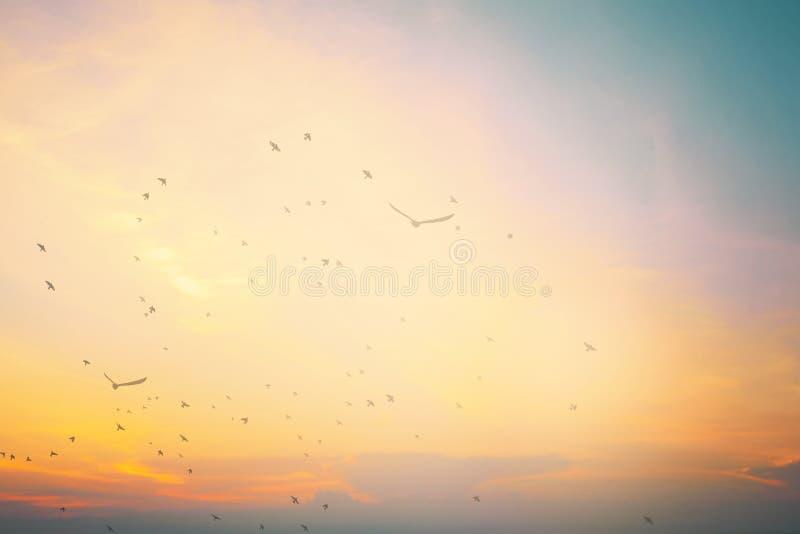 Main heureuse de hausse d'homme sur la vue de matin Le chr?tien inspirent Dieu d'?loge sur le fond de Vendredi Saint Maintenant l image stock