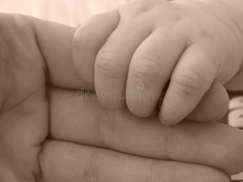 Main infantile d'adulte de fixation de main photos libres de droits