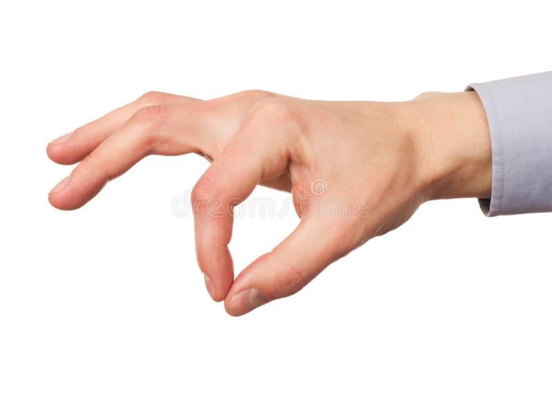 Main mâle photos libres de droits