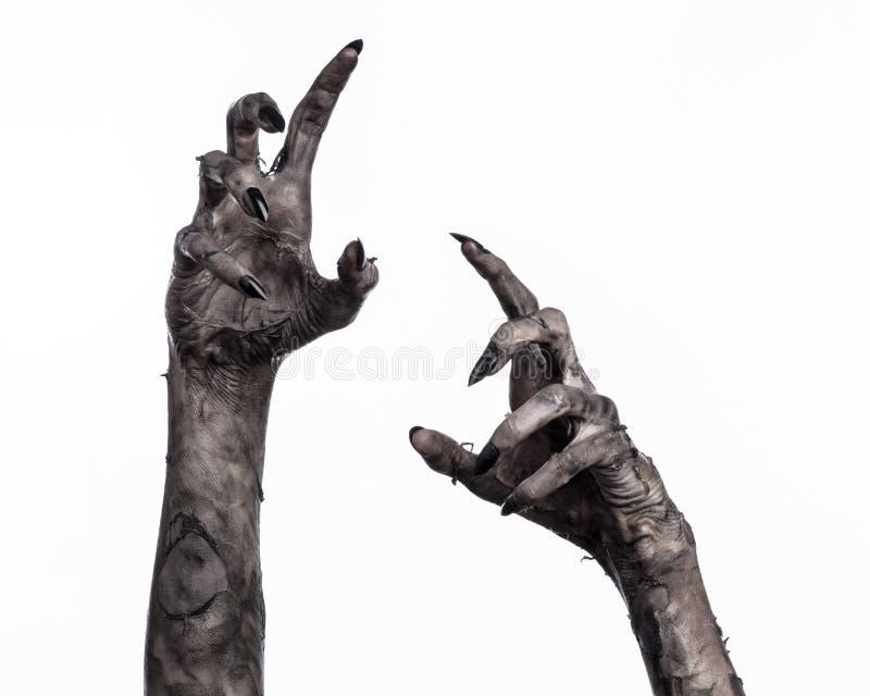 Main noire de la mort, la marche complètement, thème de zombi, thème de Halloween, mains de zombi, fond blanc, mains de maman images stock