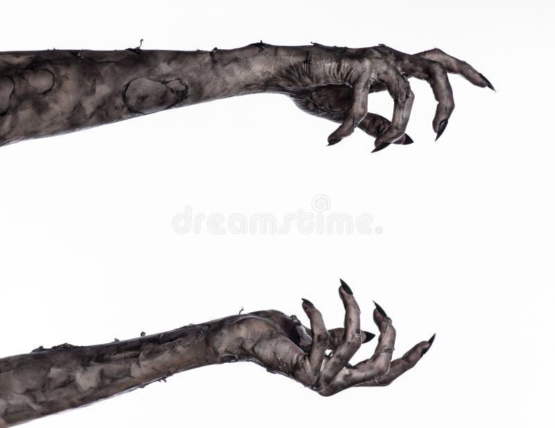 Main noire de la mort, la marche complètement, thème de zombi, thème de Halloween, mains de zombi, fond blanc, mains de maman photos stock