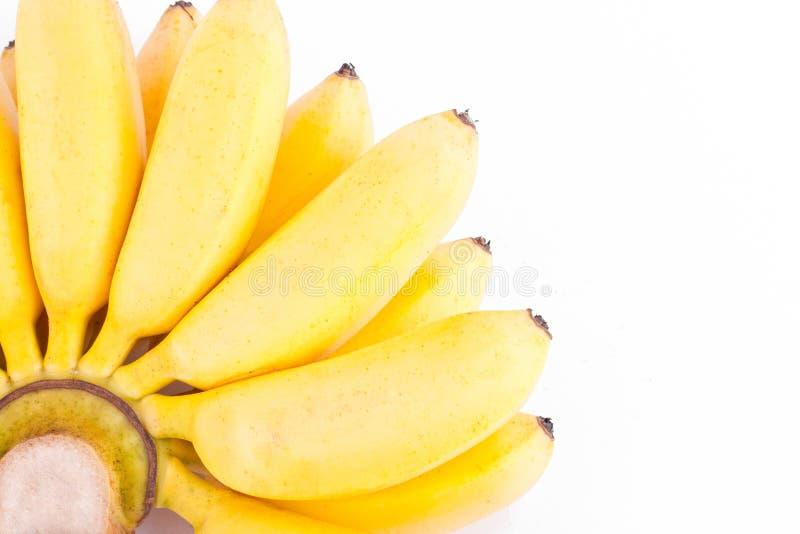 Main organique des bananes d'or sur la nourriture saine de fruit de Pisang Mas Banana de fond blanc d'isolement images libres de droits