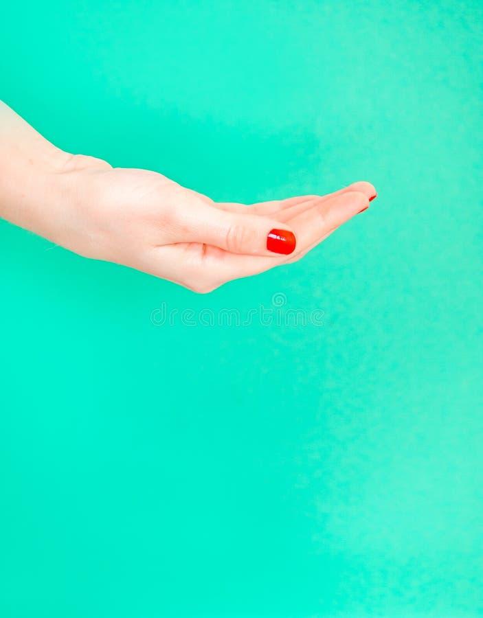 Main ouverte de femme sur le fond d'isolement de couleur verte de turquoise La main femelle étire quelque chose Fixation de main  photographie stock libre de droits