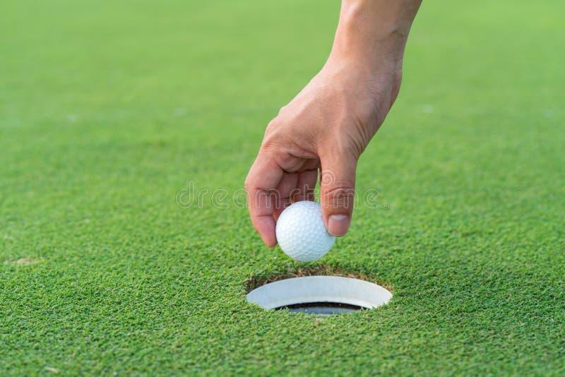 Main prenant une boule de golf du fairway ? la cour de golf image stock