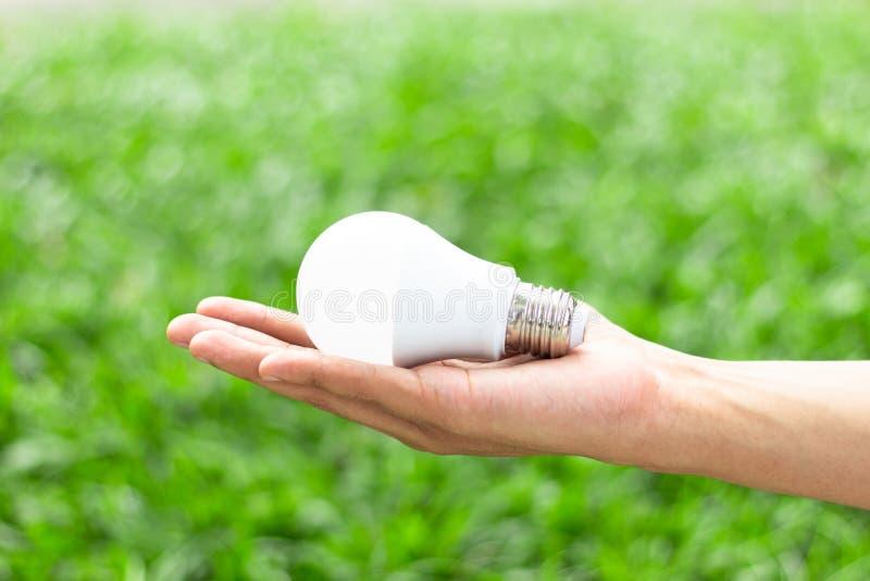 Main tenant l'ampoule de LED avec l'éclairage sur le fond vert de nature photos libres de droits