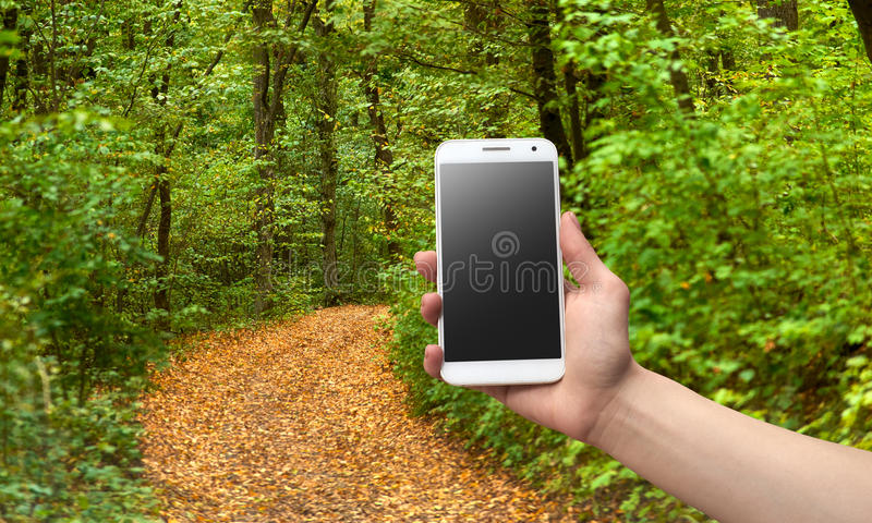Main tenant le téléphone dans une forêt photographie stock