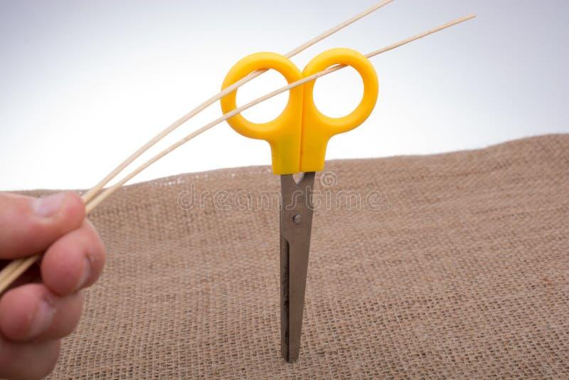 Main tenant les bâtons en bois par les poignées des ciseaux image stock