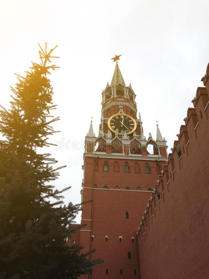 The main tower of the Moscow Kremlin with huge clock-chimes and a wall of red brick near the high fir stock photo
