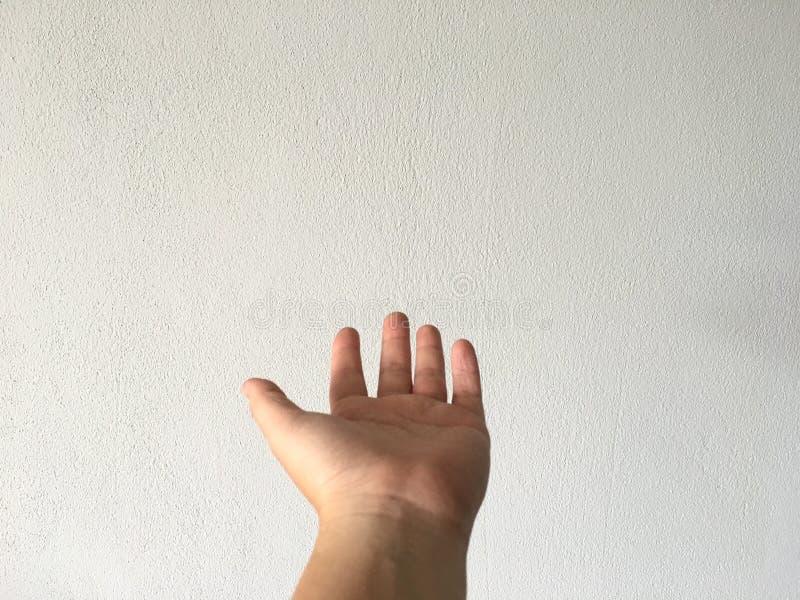 Main vide ouverte de femme dans l'en avant sur le fond de mur de ciment blanc photo libre de droits