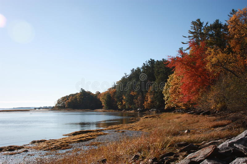 Maine coast in fall royalty free stock image