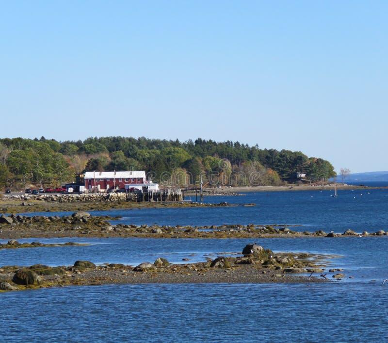 Maine Coastal fjärd royaltyfri fotografi