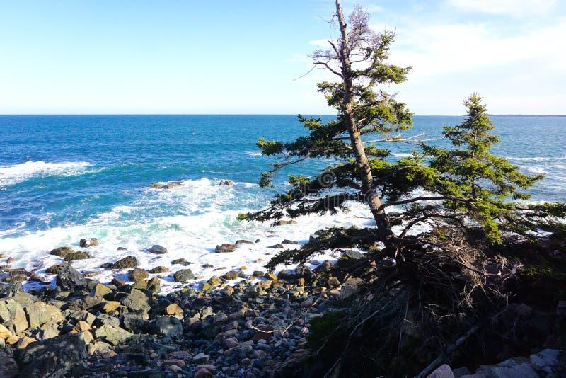 Maine Coastline fotos de archivo