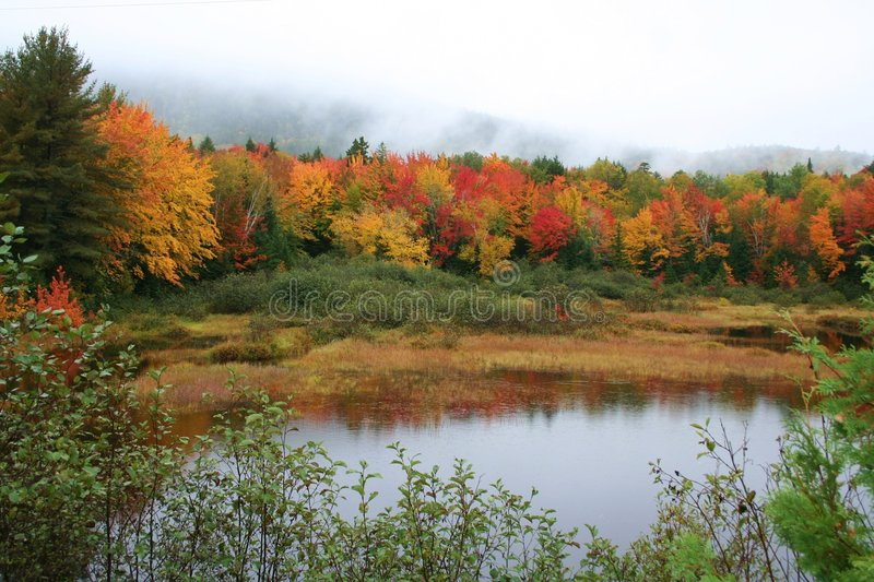 Download Maine fall foliage & pond stock photo. Image of pond, colorful - 6951810