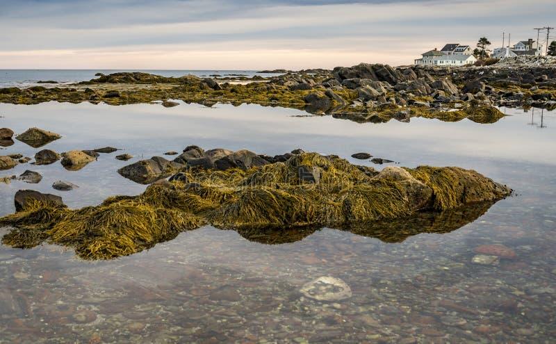 Maine-Küste bei Sonnenuntergang lizenzfreie stockfotografie