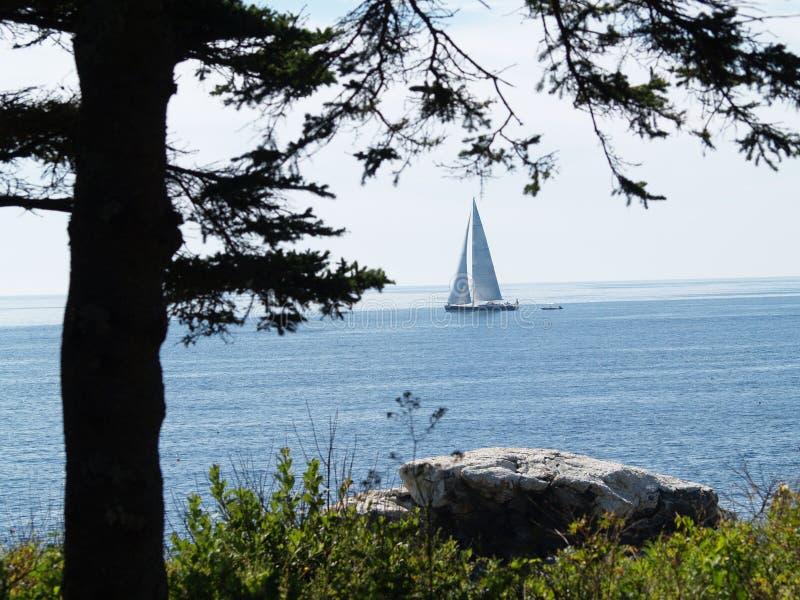 Maine linii brzegowej żaglówka fotografia royalty free