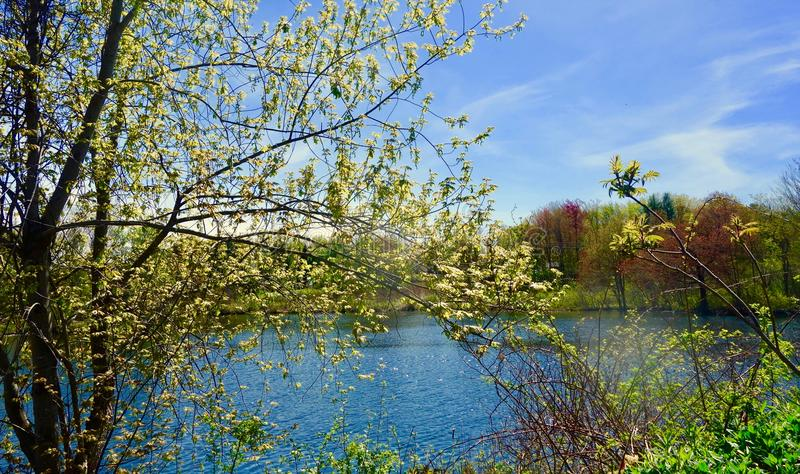 Maine river bank on a bright day in May, serene serenity calm stock photos