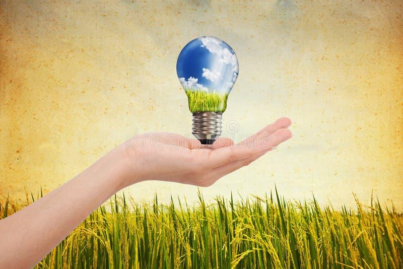 Mains économisant l'énergie verte images stock