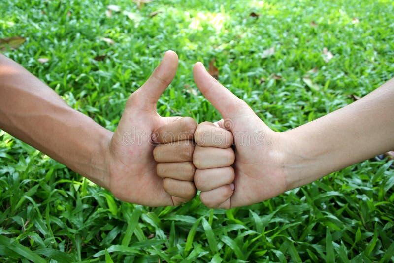 Download Mains photo stock. Image du jardin, vert, mains, ensemble - 739928